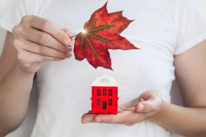 What can we expect from the Fall Real Estate Market in Ottawa?